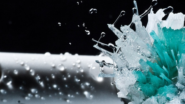 Up to 3,000 Times the Bacterial Growth Found on Hollow-Head Toothbrushes