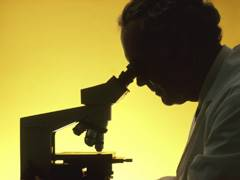 Gene Provides Hints to Type 1 Diabetes Development