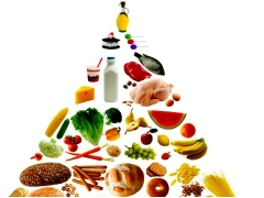 """Part One – Protein is Not """"Free"""""""