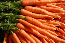 A Carrot a Day – Reducing the Risk of Fibroids, Ovarian