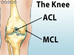 Knee Injuries Health Short