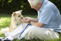 Man's Best Friend Helps with Arthritis Research