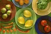 Vegan Diet Yields Promising Results for Type 2 Dia